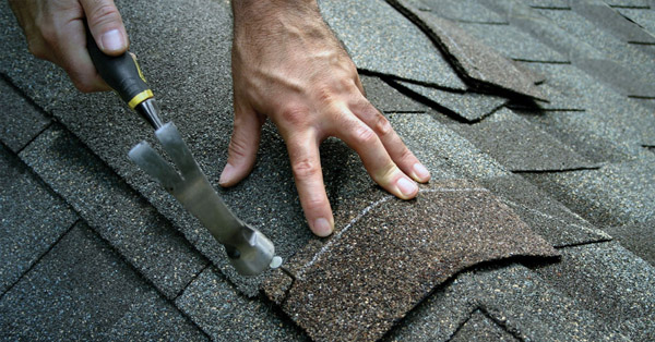 Shingle Roofing Material